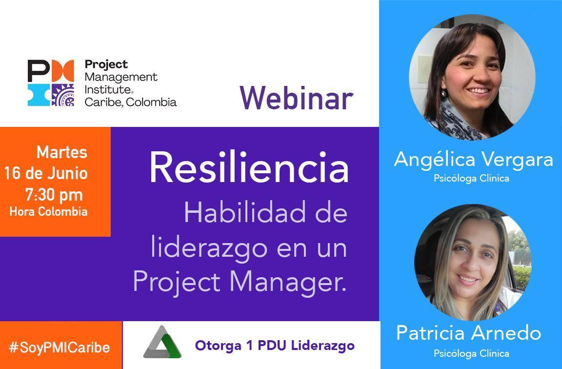 Resiliencia: Habilidad de liderazgo en un Project Manager