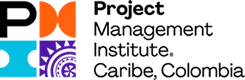 pmi_chapter_caribe_logo 245